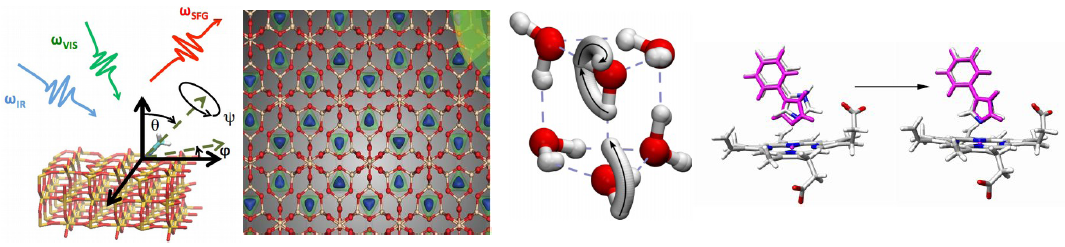 Illustration consisting of various molecules in 2D and 3D